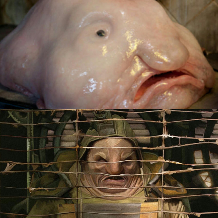 Plutt vs. The Blobfish by Konami-hime