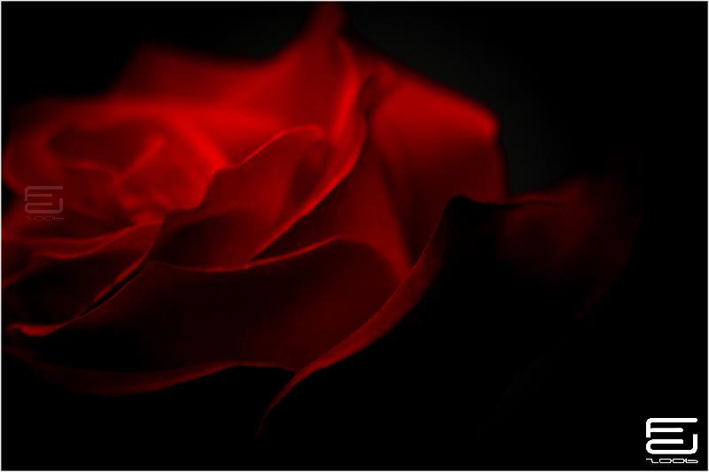 Glowing by lazereth