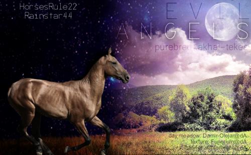 Evil Angels banner