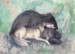 Kodi and Baer