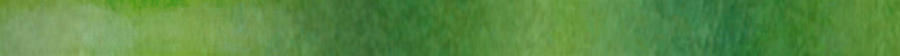 Blog Banner - greenish