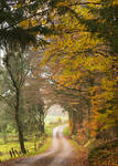 Autumn at the country road by roisabborrar