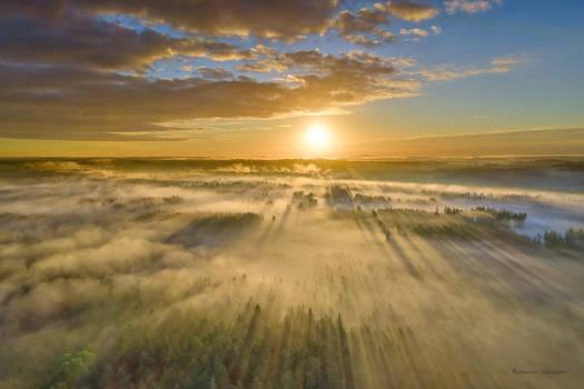 Sunrise over the foggy landscape