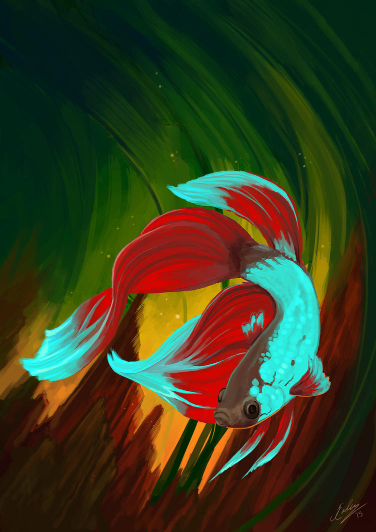 Max the Betta by JenniferEasley