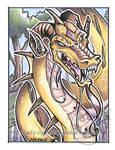 Dragon ACEO