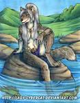 Lake Wolf Original Art