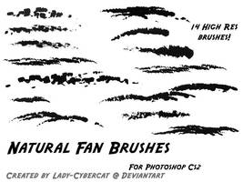Natural Fan Brushes for Photoshop CS2