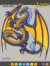 Tavon Adoptable Dragon SOLD