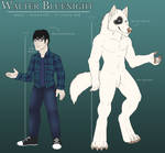 COMMISSION: Walter Bluenight Reference