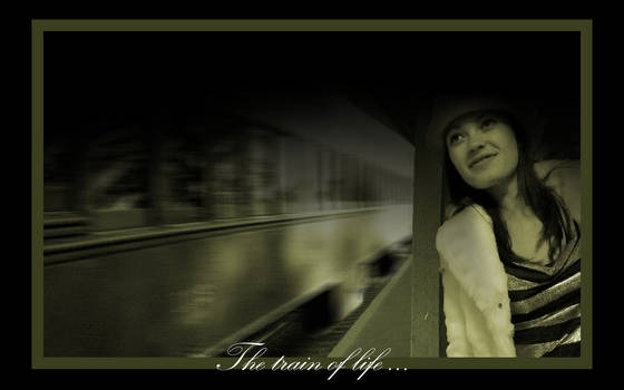 : : the train of life : :