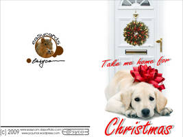 Take me home for christmas by EasyCom