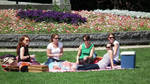 Picnic in Amsterdam by EasyCom