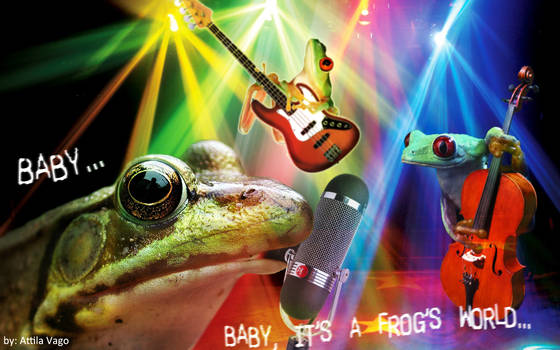 Baby, it's a frog's world ...
