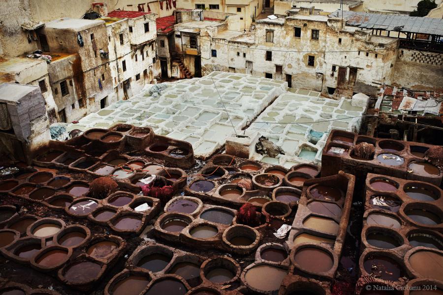 профессиональный, фотограф, Кишинев, фес, марокко, tanneries, fes, morocco, chouara,