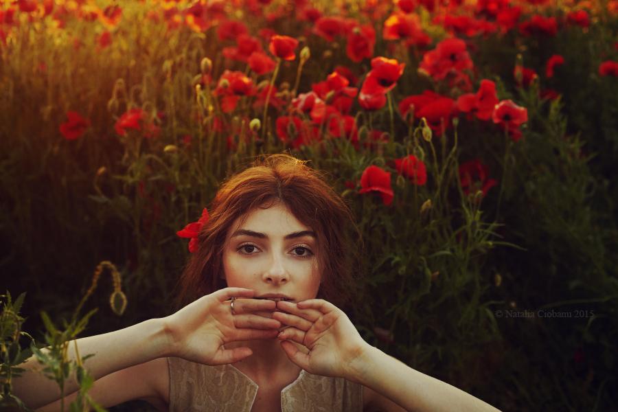 профессиональный, фотограф, Кишинев, красные, маки, Москва,