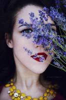 Lavender by NataliaCiobanu