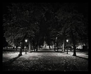 Ruttopuisto 2 by MichalTokarczuk