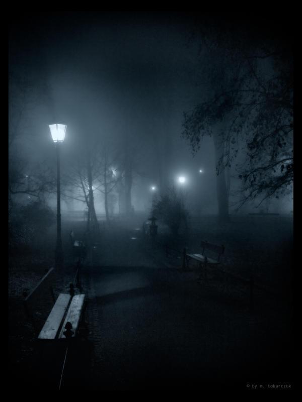 planty by night 2 by MichalTokarczuk