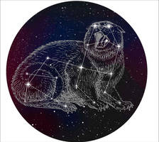 Cat constellation by Mr--Gone