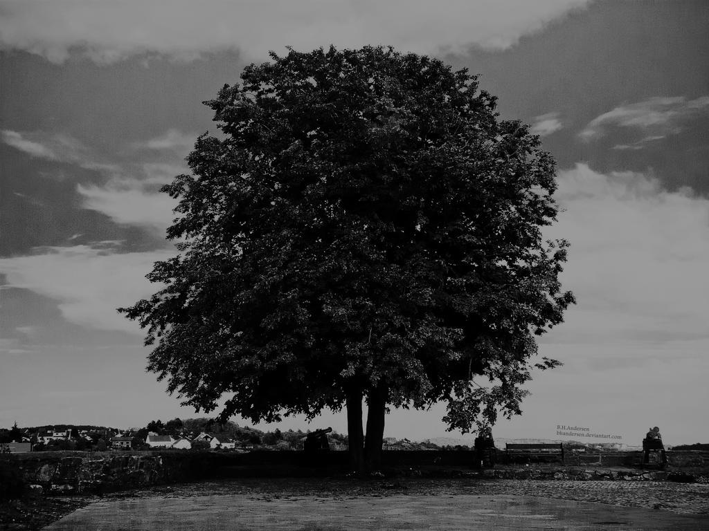 -Dark Tree- by BHandersen on DeviantArt