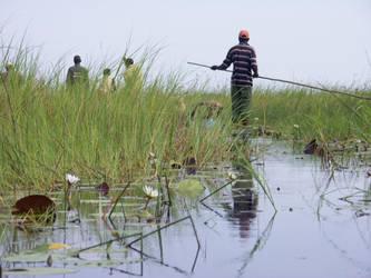 Okavango Delta by khog
