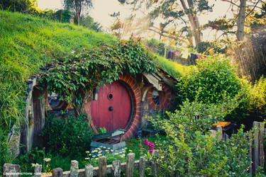 Hobbit hole by Attila-Le-Ain