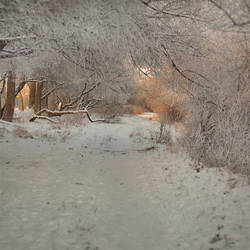 amazing winter time by PatiMakowska