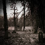 abandoned cemetery .