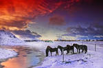 Iceland - power of silent by PatiMakowska