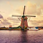 De schoonheid van Nederland in oranje by PatiMakowska