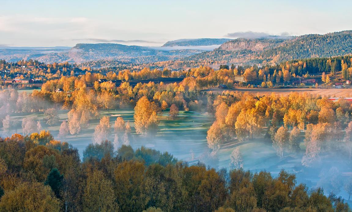 Fresh and luscious morning by PatiMakowska