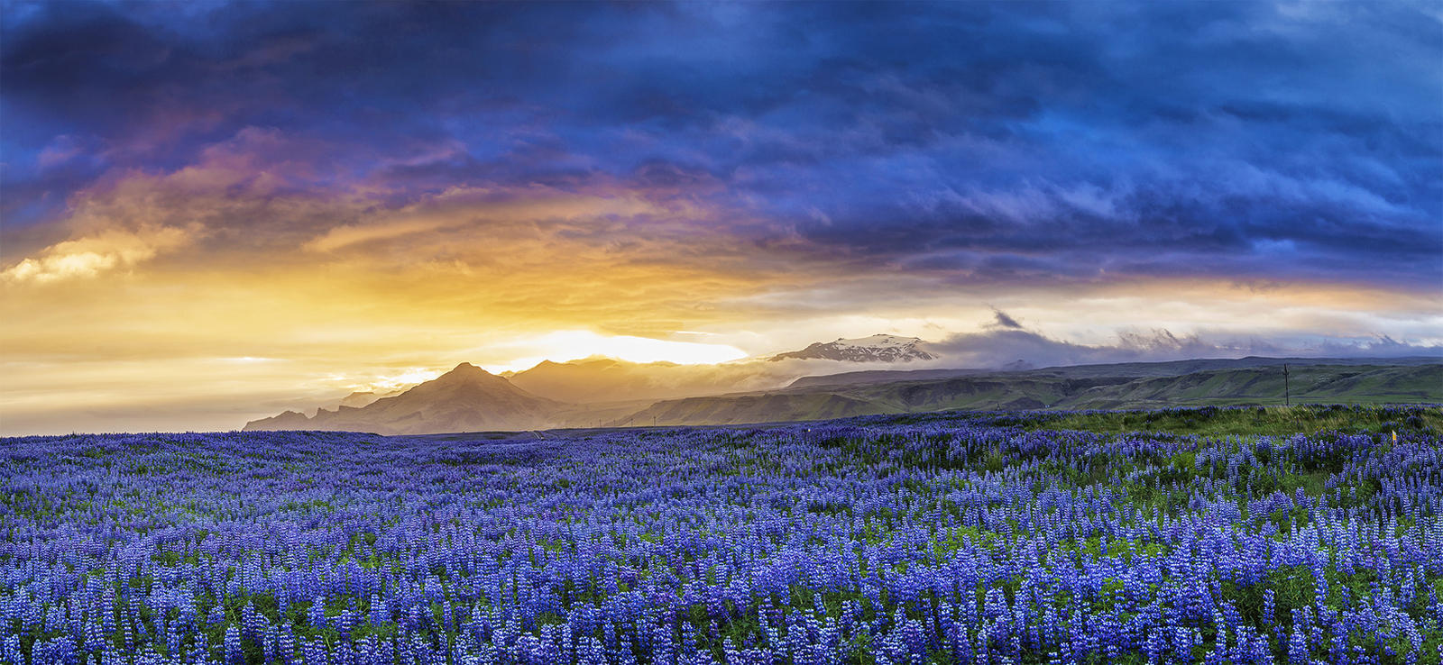 Midsummer Night on Iceland 2016 by PatiMakowska