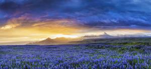 Midsummer Night on Iceland 2016