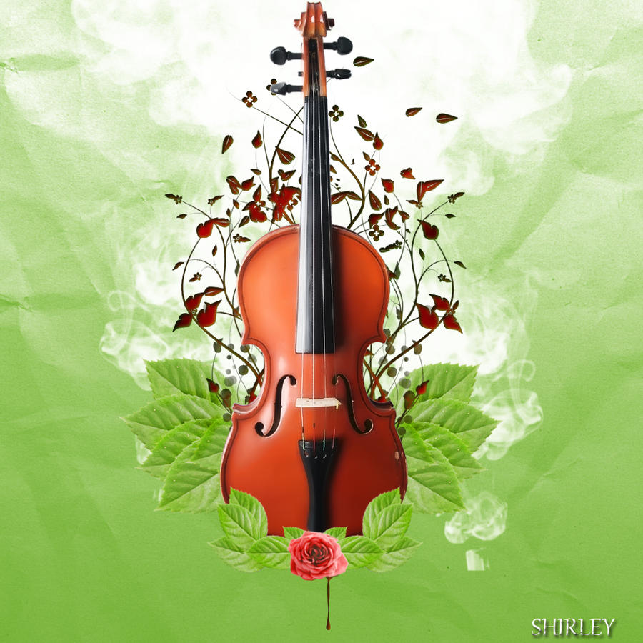 O violino by