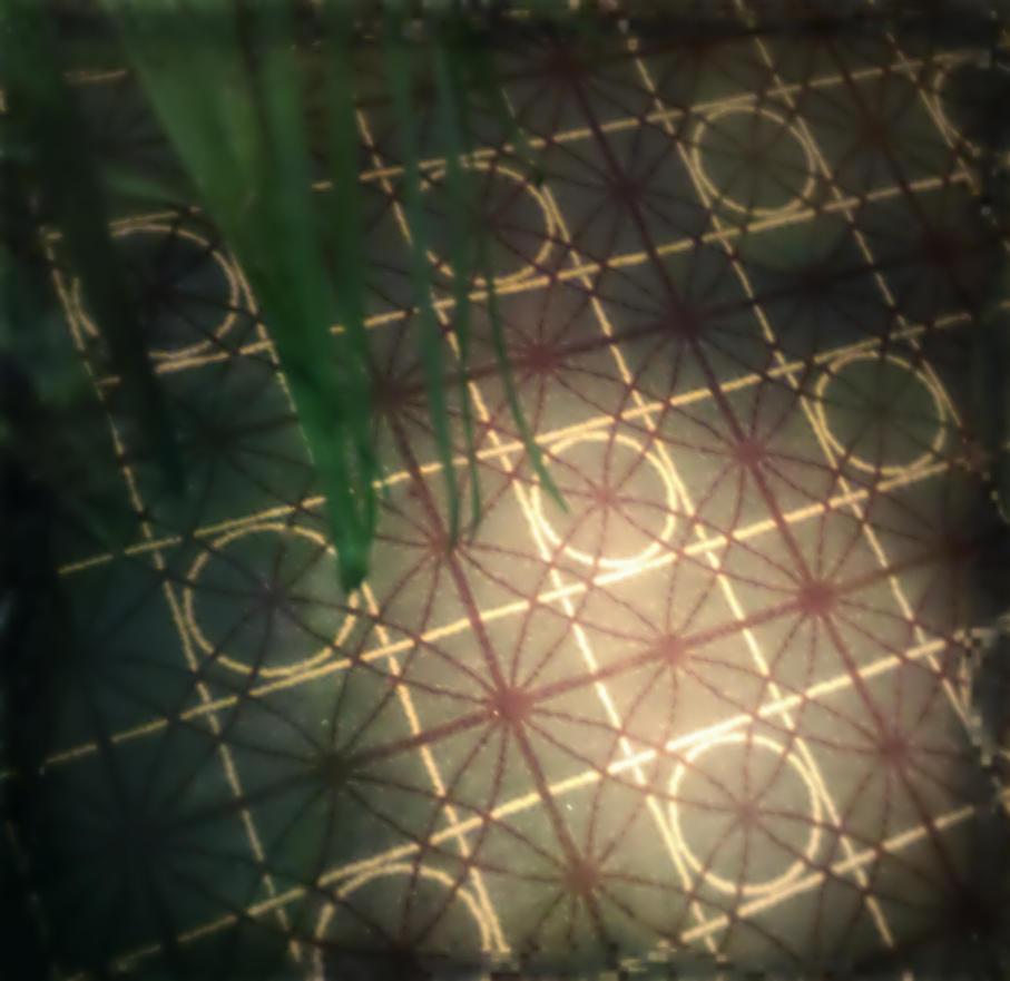 pattern by Mumugii