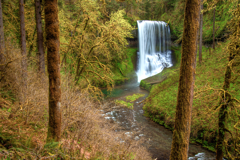 Love Creek Nature Center Berrien Center Mi