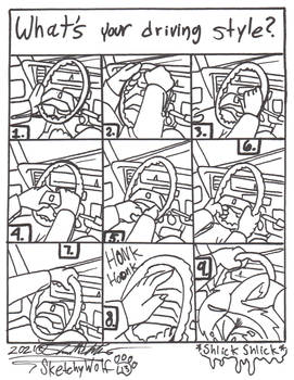 Driving Styles