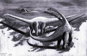 Sauropods by Elentarri