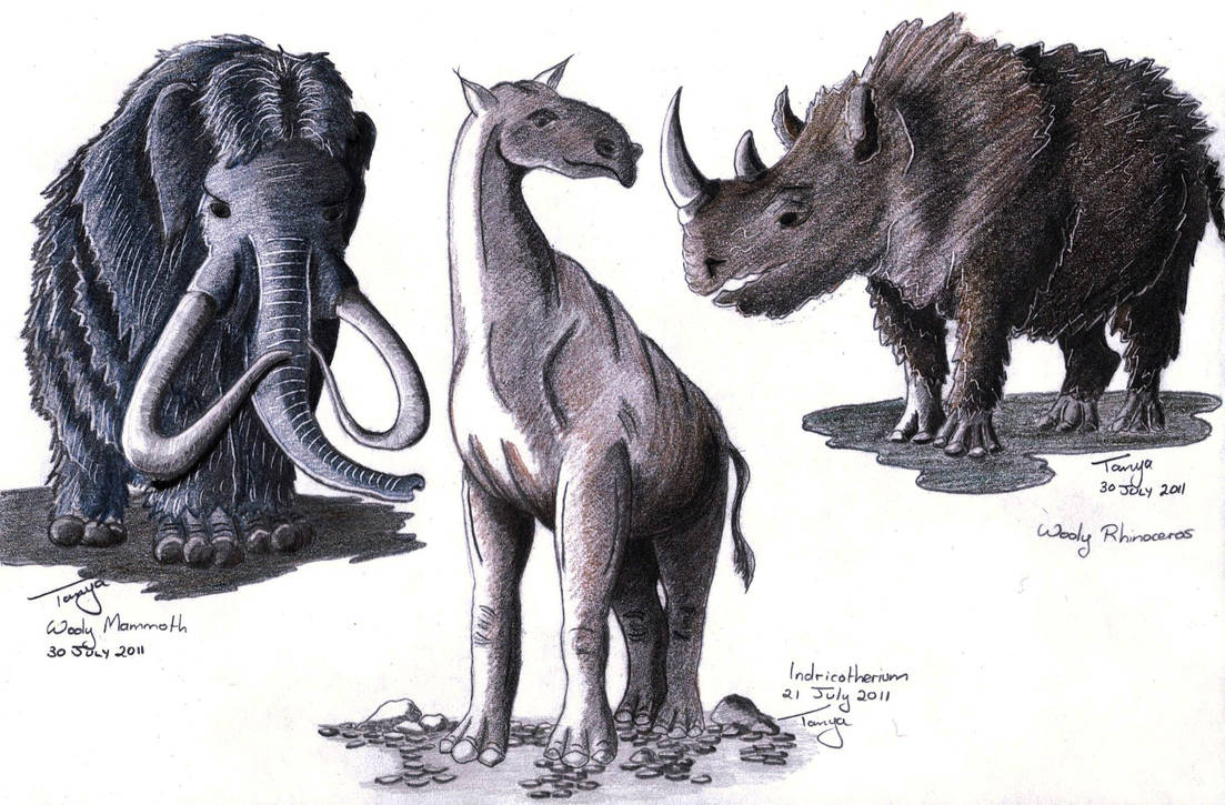 Prehistoric Mammals by Elentarri
