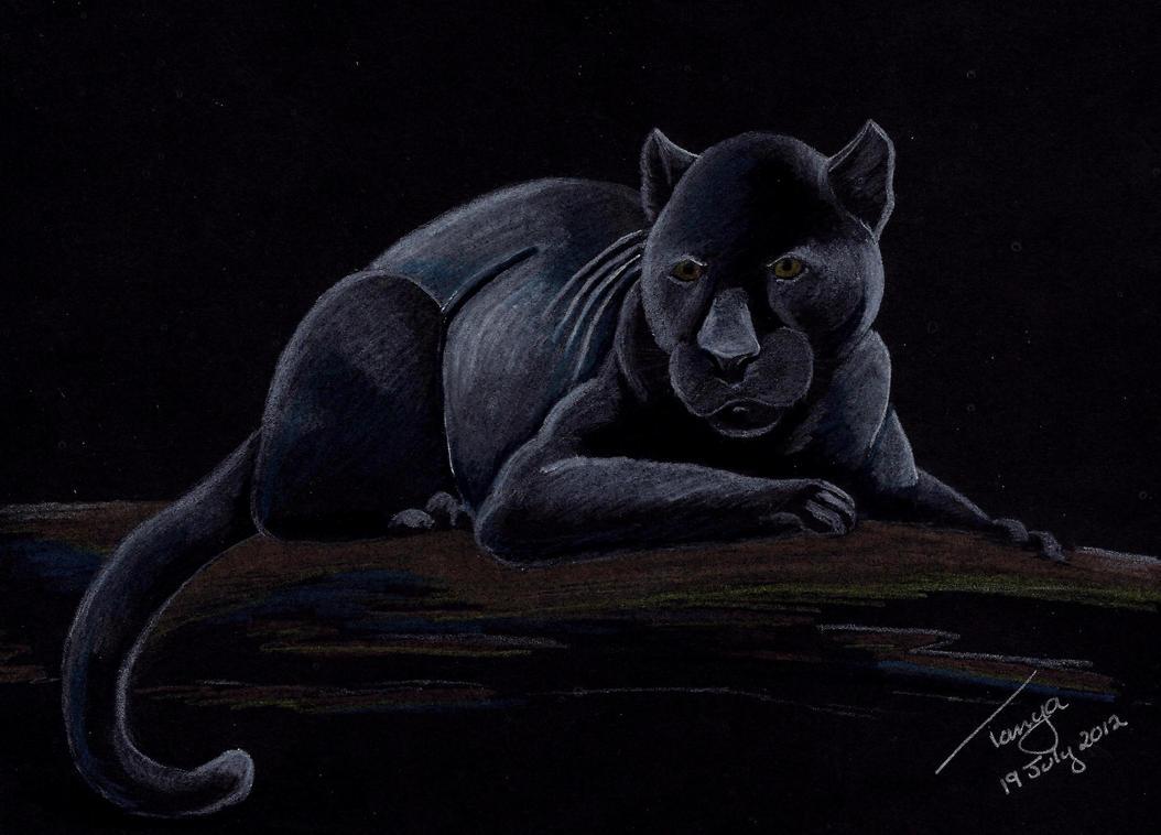 Black Panther By Portela On Deviantart: Black Panther By Elentarri On DeviantArt