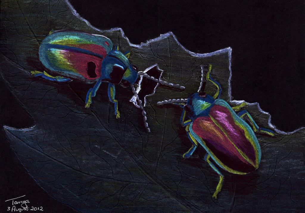 Colourful Beetles by Elentarri