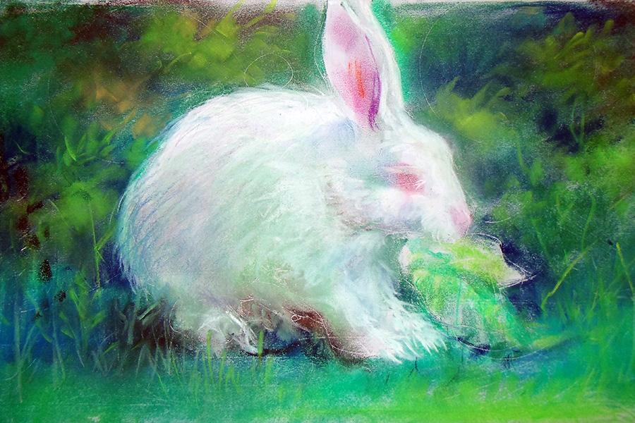 bunny by scorpy-roy