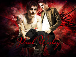 Paul Wesley by Alexya16