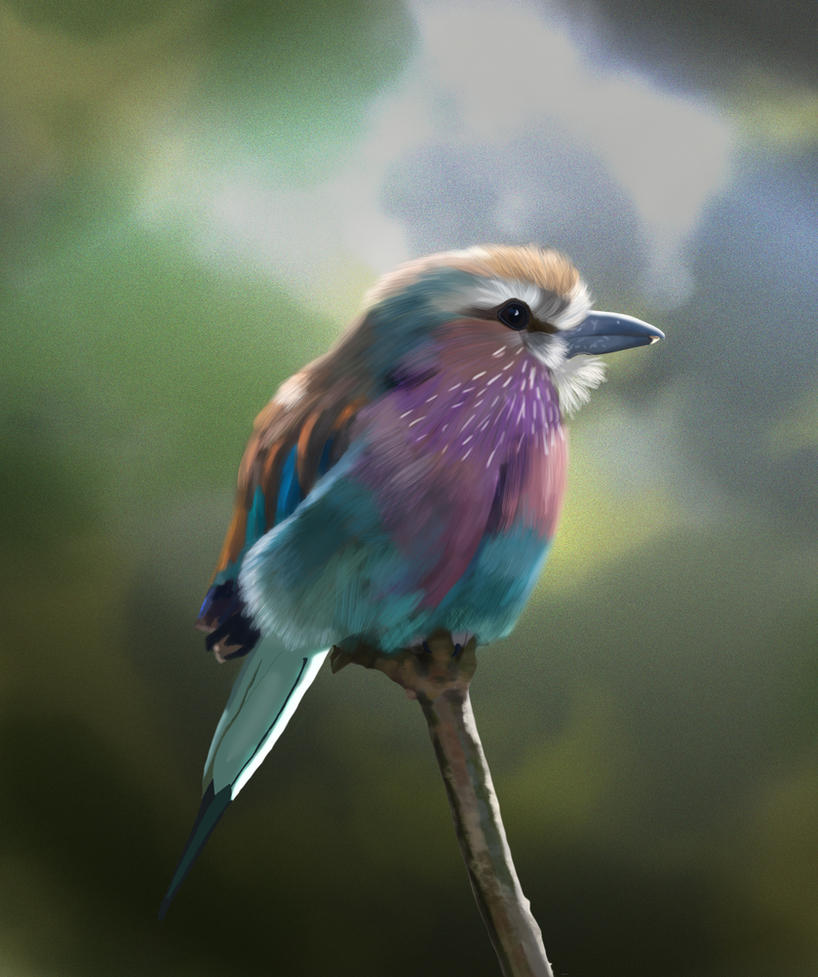 [Image: gee_s_lilac_breasted_roller_by_missimoin...6iou87.jpg]