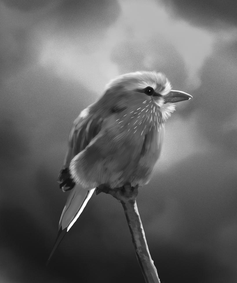 [Image: gee_s_desaturated_lilac_breasted_roller_...6iouk8.jpg]