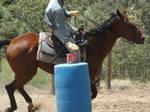Philmont 2012 Rodeo