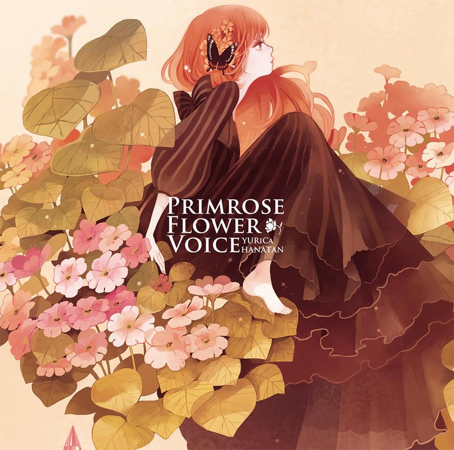15 Best Primroses images | Primroses, Beautiful flowers ...