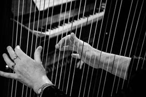hands that play with strings by DegsyJonesPhoto