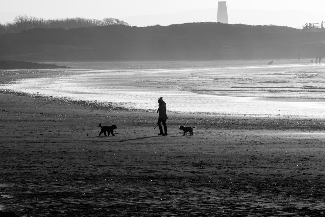 woman and dogs by DegsyJonesPhoto