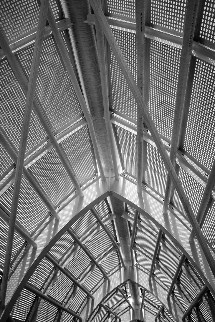 mesh by DegsyJonesPhoto